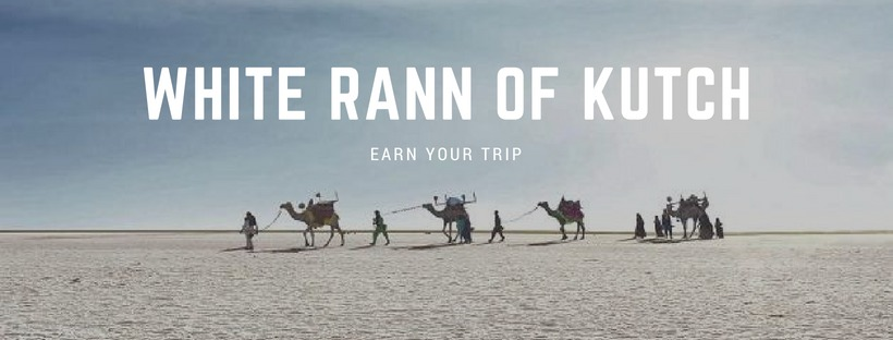 Earn Your Trip to Rann Utsav 2018-19