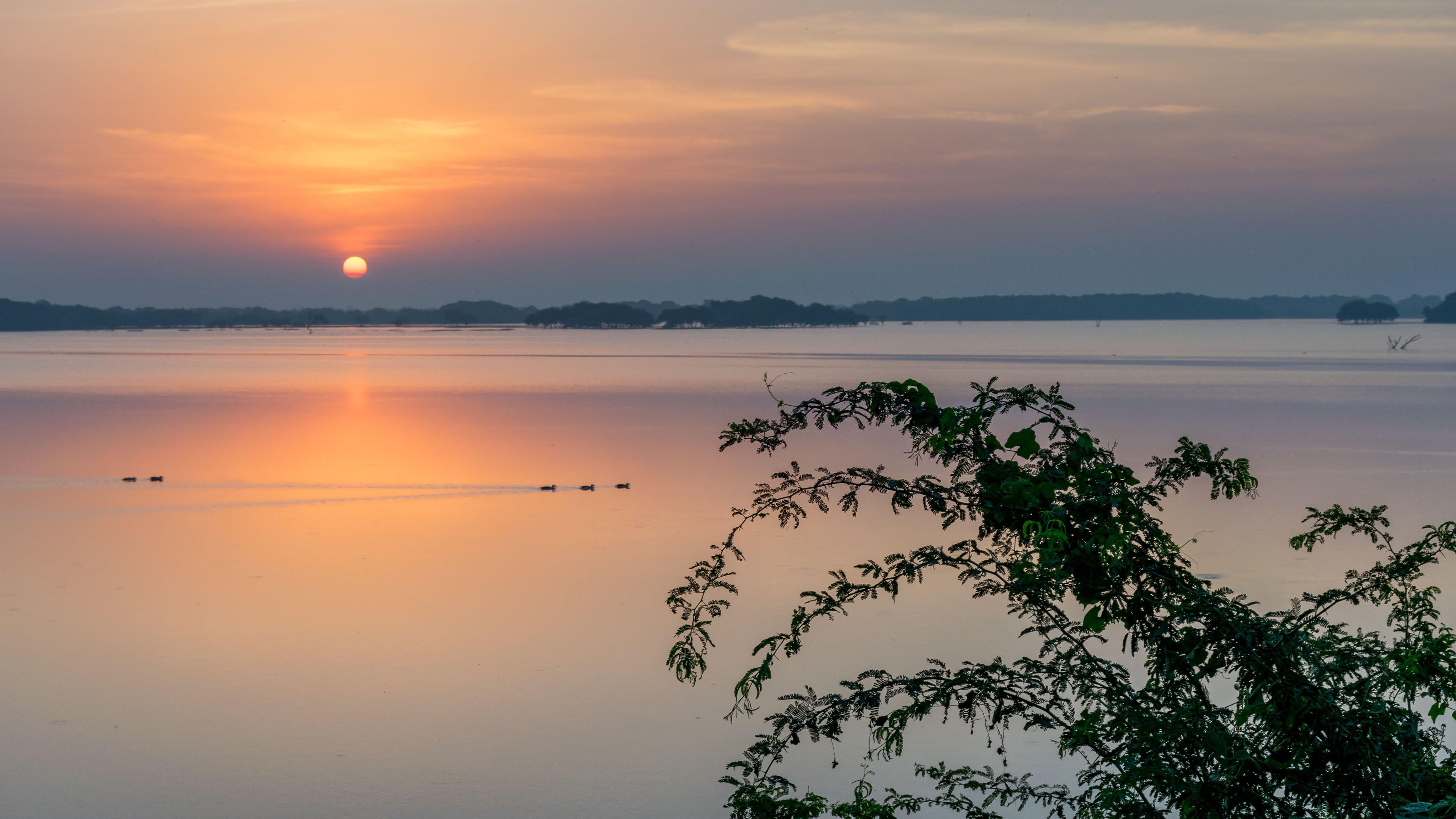 Thol Lake Ahmedabad