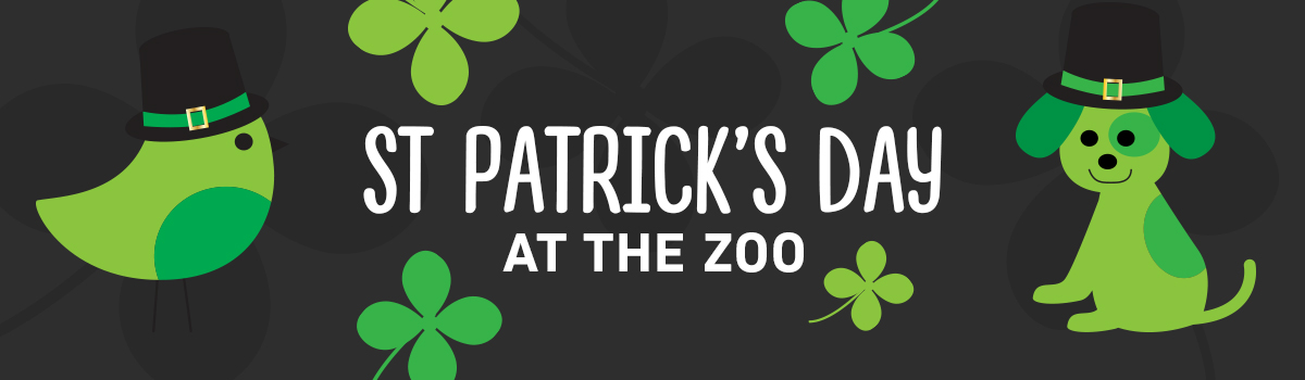 St. Patrick's Day At The Zoo In Kansas City And Everything About It