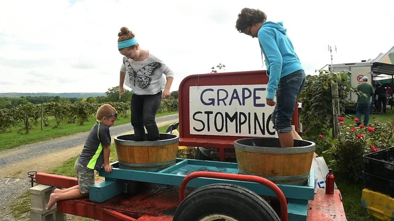 naples grape festival | harvest festival in USA